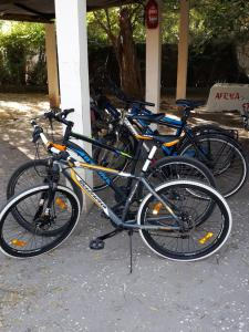 Biking at or in the surroundings of Africa Strike