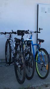 Montar en bicicleta en Acougo, tu casa en el Camino de Santiago o alrededores