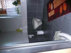 Ein Badezimmer in der Unterkunft Landurlaub in Schiebsdorf