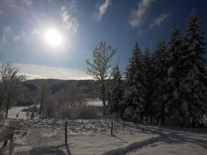 Natura Plitvice Lakes during the winter