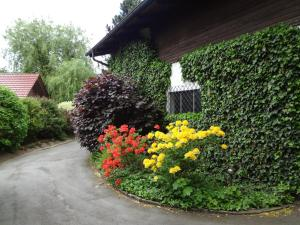 Ein Garten an der Unterkunft Haus Christine Aigen Schlägl - Adalbert Stifter