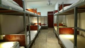 A bunk bed or bunk beds in a room at Tony Central Hostel