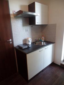 Kuchyň nebo kuchyňský kout v ubytování Apartmány City