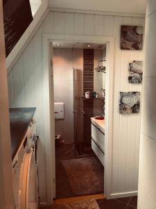 A bathroom at Ålesund downtown loft room with shared bathroom