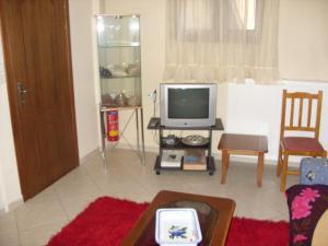 Μια τηλεόραση ή/και κέντρο ψυχαγωγίας στο Frida