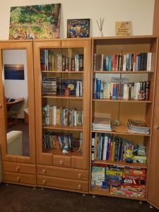 Biblioteka w apartamencie