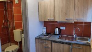 Кухня или мини-кухня в Green Place Portoroz RC