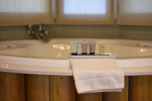 A bathroom at Nir David Country Lodge
