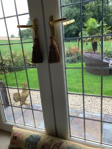 A view of the garden at Retreat at The Knowe Auchincruive Estate or nearby