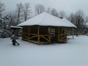 Karpaty Viking during the winter