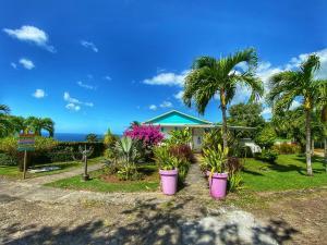 A garden outside Paradis Tropical appart'hotel