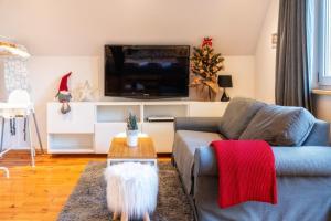 A television and/or entertainment centre at Gabi Apartament Zakopane