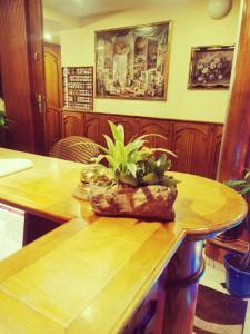 Restaurace v ubytování River Star Hotel