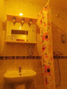 Koupelna v ubytování River Star Hotel