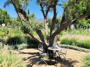 Zahrada ubytování Stone Cottage Retreat