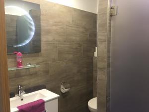 A bathroom at Apartmány Svatošské skály