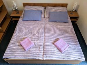Postel nebo postele na pokoji v ubytování Pohoda u Lva