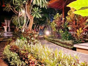 A garden outside Kusnadi Hotel