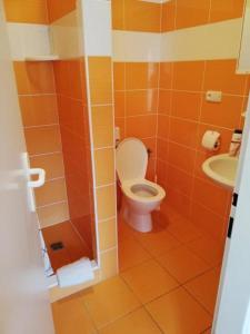 Koupelna v ubytování Herbenka