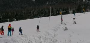 Skiing at the hotel or nearby