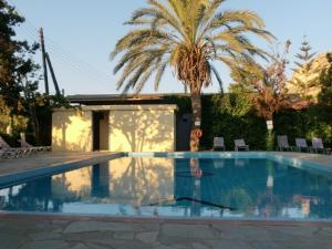 The swimming pool at or near Hotel Neos Matala