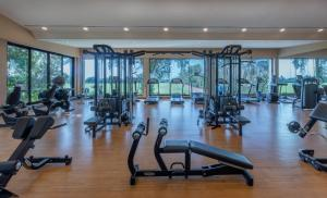 The fitness center and/or fitness facilities at Meliá Desert Palm Dubai
