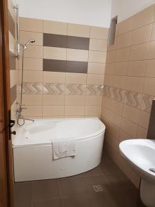 A bathroom at Pensiunea Diadis