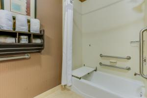 A bathroom at Holiday Inn Express Hotel & Suites Huntsville
