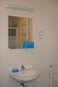 Ein Badezimmer in der Unterkunft Pension Am Steinberg