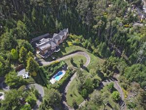 Una vista aérea de Amigos del Bosque