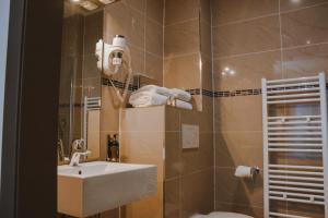 Een badkamer bij Dansaert Hotel