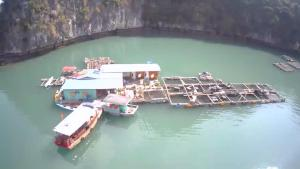 A bird's-eye view of Xinh Floating House