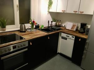 A kitchen or kitchenette at Heidelberg Apheartments