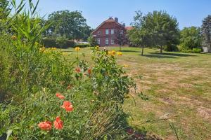 Ein Garten an der Unterkunft Elbhof Harnisch