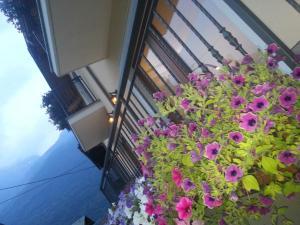 Balcone o terrazza di Locanda Bellaguarda B&B