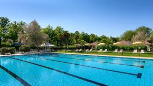 The swimming pool at or near Albatros studio Classic