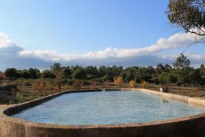 A piscina em ou perto de Quinta da Alma Cheia