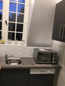 A kitchen or kitchenette at Magnifique deux pièces au calme