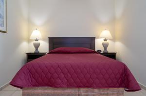 Cama ou camas em um quarto em Apartamentu Holanda