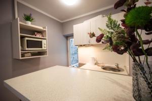A kitchen or kitchenette at Lesi 3 Studio Apartment
