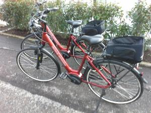 Biking at or in the surroundings of Stadthotel Pfeffermühle