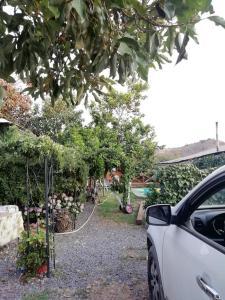 A garden outside CABAÑAS VILLA PRAT