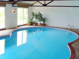 The swimming pool at or near The Cottage, Sampford Courtenay
