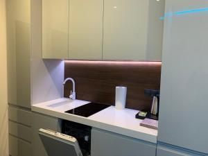 Kuchyň nebo kuchyňský kout v ubytování #7A WorkTravel Central MiniApart