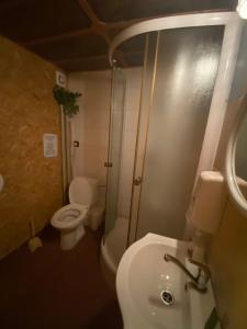 Koupelna v ubytování Chata Junior