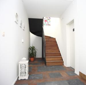 TV o dispositivi per l'intrattenimento presso Apartments Résidence Lignum