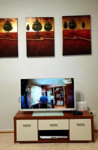TV tai viihdekeskus majoituspaikassa Apartments N & P