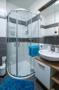 Koupelna v ubytování Astra Lipno