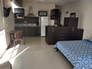A kitchen or kitchenette at Confort Ejecutivo Suites del Valle