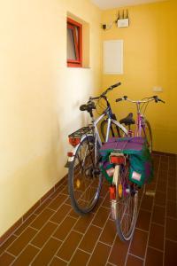 Radfahren an der Unterkunft Kulturgasthof Alte Reederei oder in der Nähe